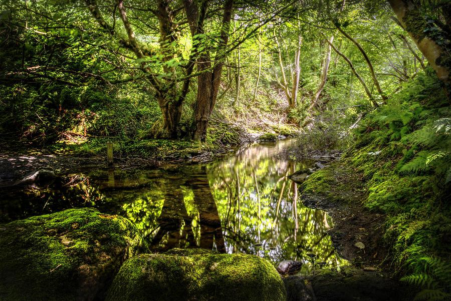 Afon Rhaeadr Fawr Photograph