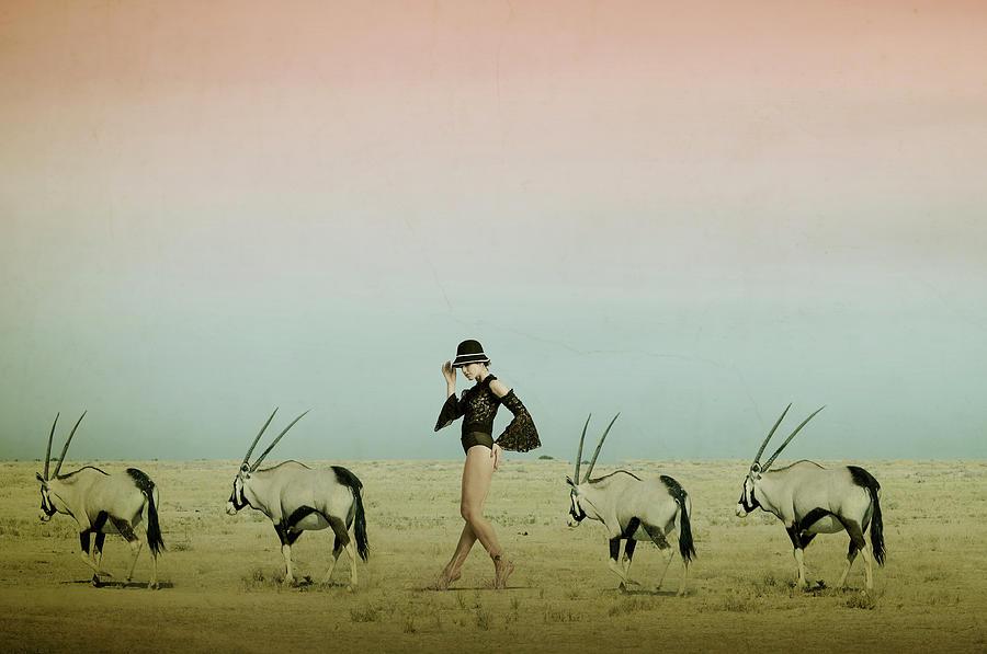 Fun Photograph - Africa Iv by Christine Von Diepenbroek