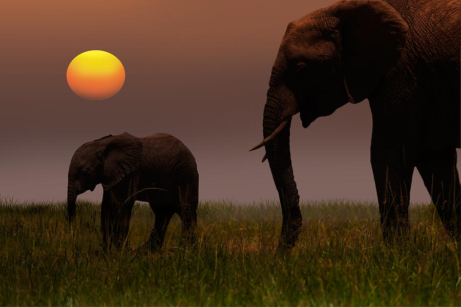 African Mother Elephant And Baby - Photograph by 1001slide