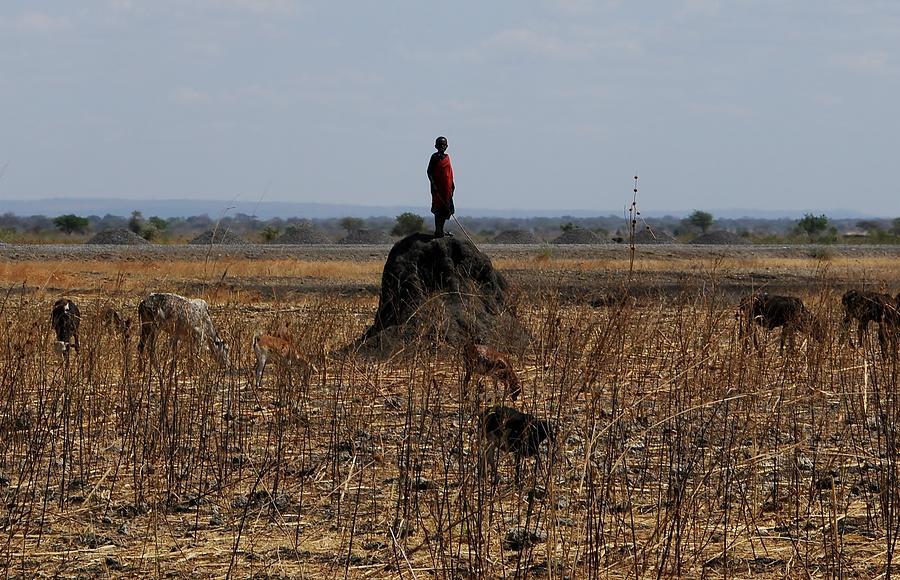 Masai Photograph - African Series Masai Boy by Katherine Green