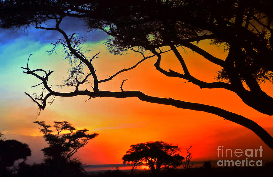 Africa Photograph - African Skies by Lydia Holly