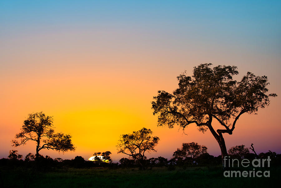 Sunset Photograph - African Sunset by Delphimages Photo Creations
