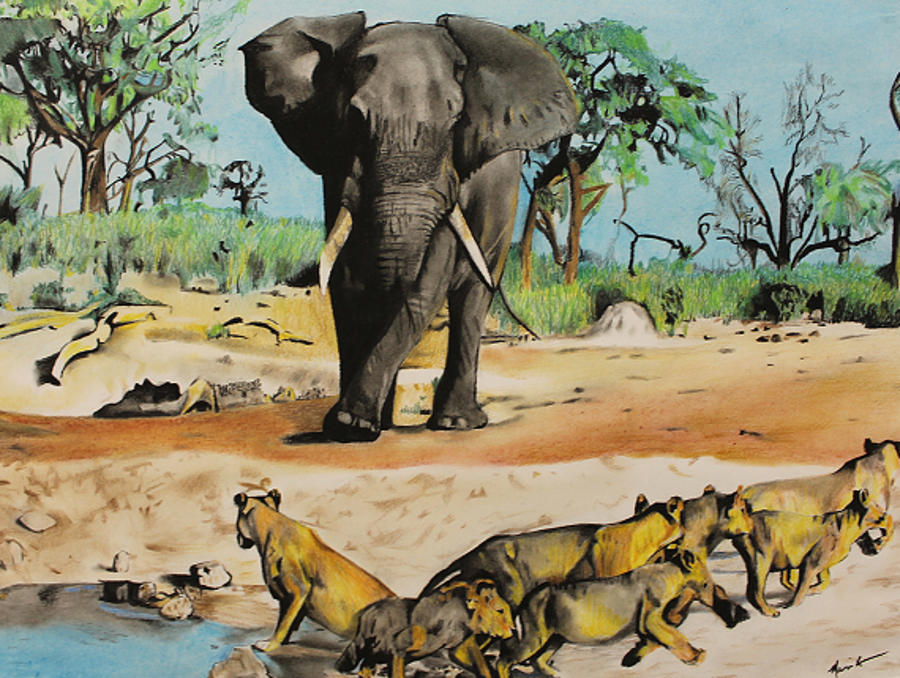 African Wildlife Drawing By Marvin Ryan