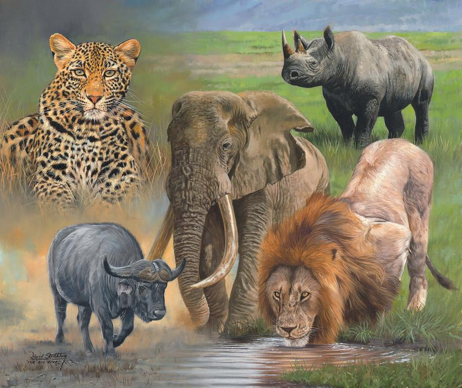 Africa Painting - Africas Big Five by David Stribbling