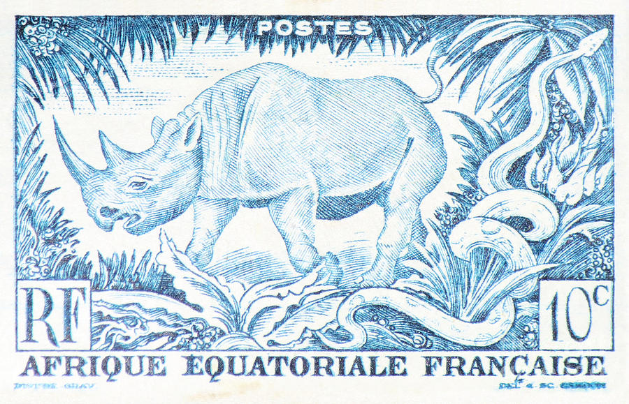 Postage Photograph - Afrique Rhino by Jackie Farnsworth