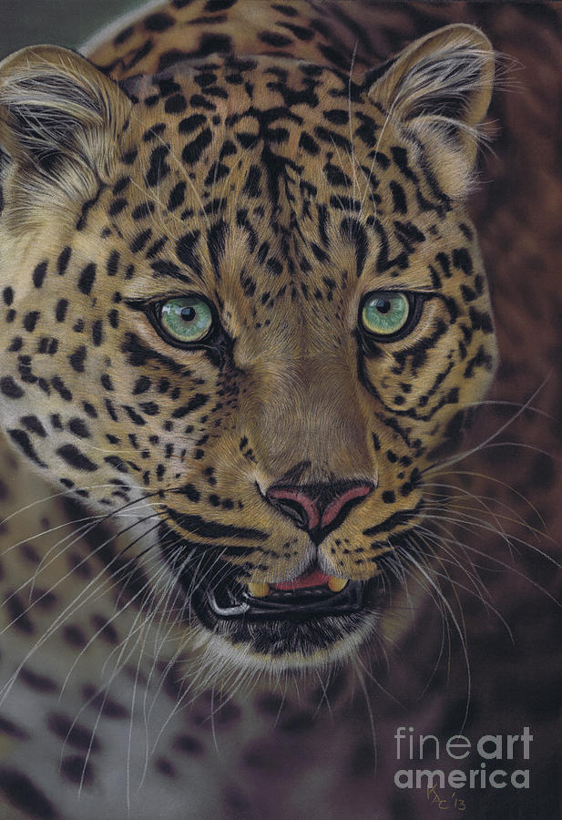 Leopard Pastel - After dark all cats are leopards by Karie-Ann Cooper