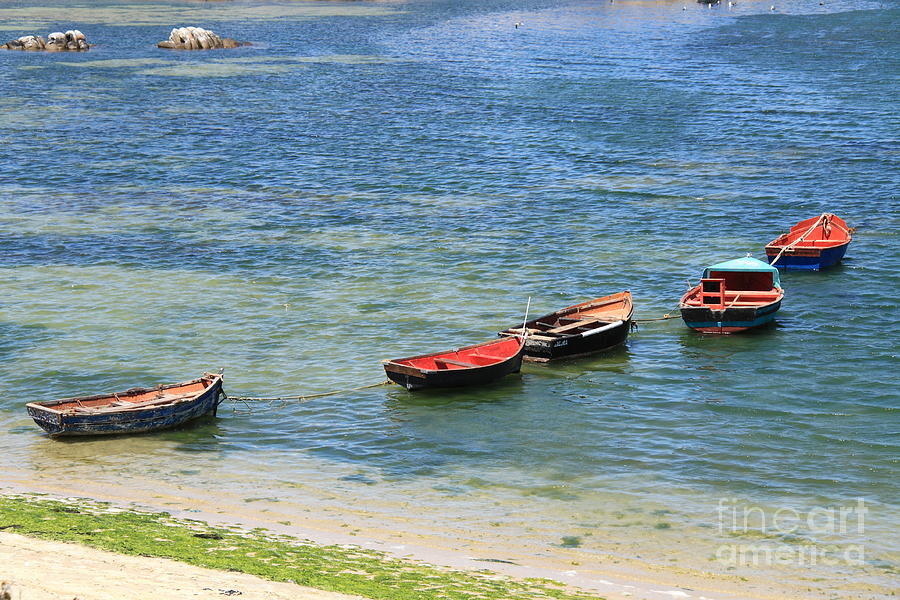 Fishing Boats Photograph - After The Catch by David Van der Merwe