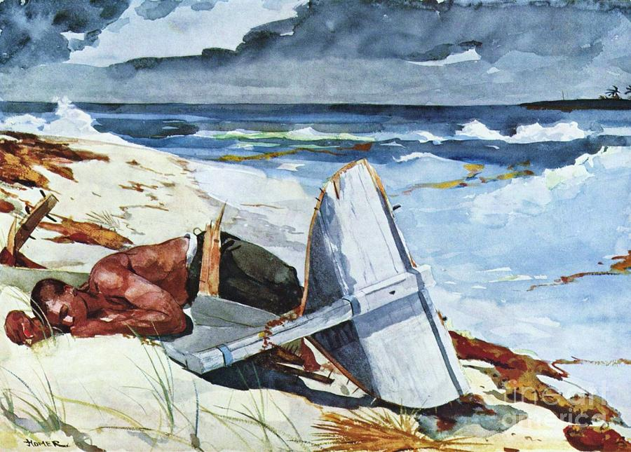 Pd Painting - After The Hurricane by Pg Reproductions