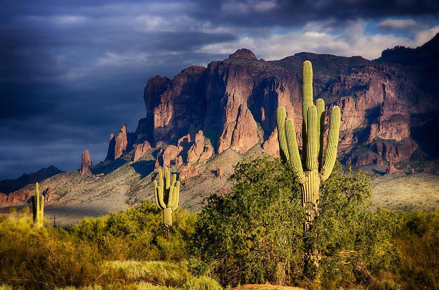 Saguaro Sunset Photograph - After The Rain  by Saija  Lehtonen