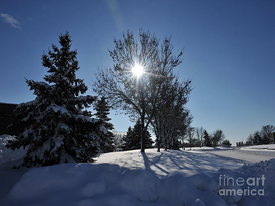 Snow Photograph - After The Snow 3 by Graham Taylor