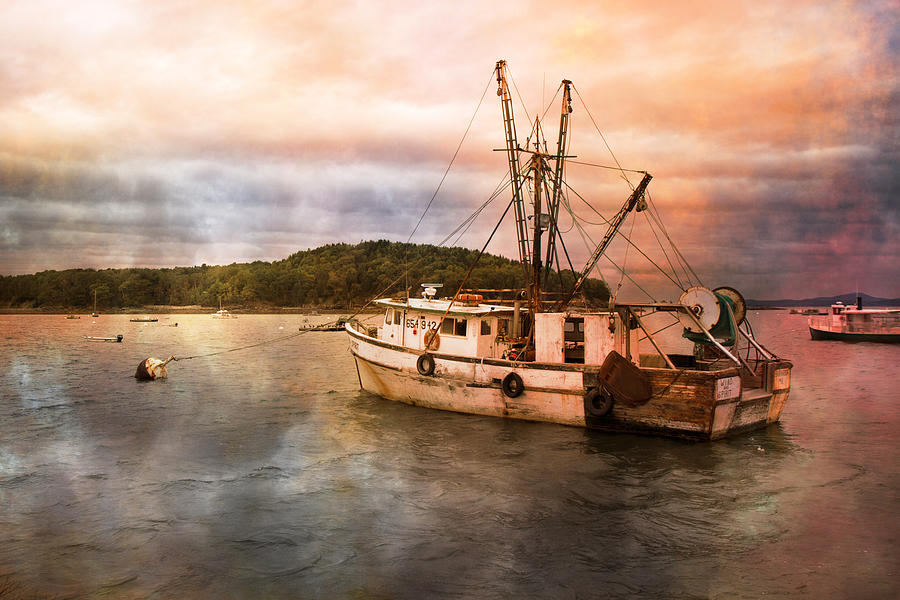 Maine Photograph - After The Storm by Betsy Knapp