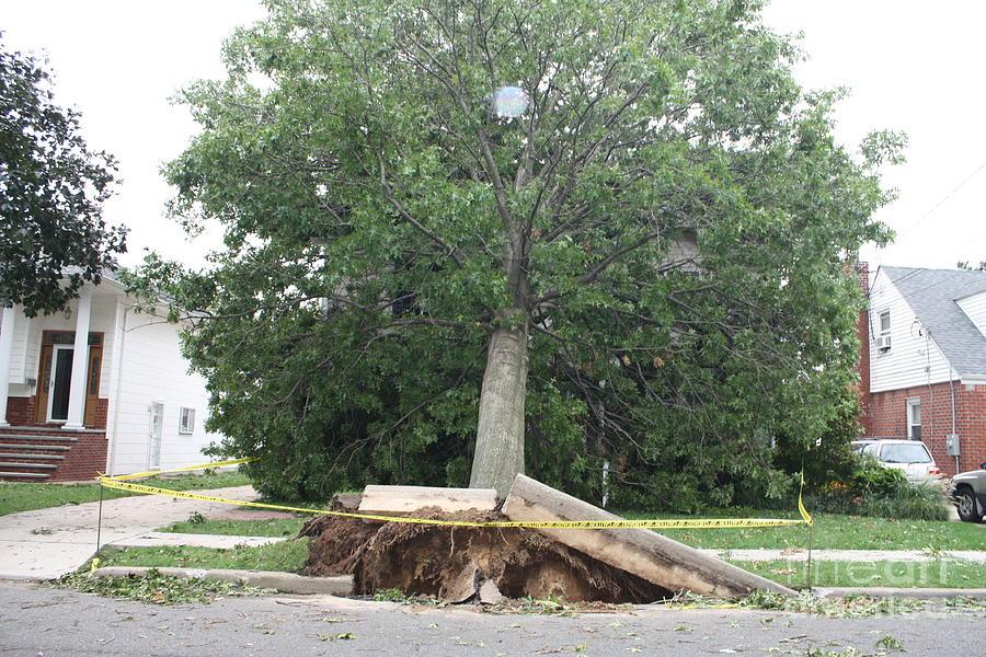 Aftermath Of Hurricane Irene Photograph - Aftermath Of Hurricane Irene by John Telfer