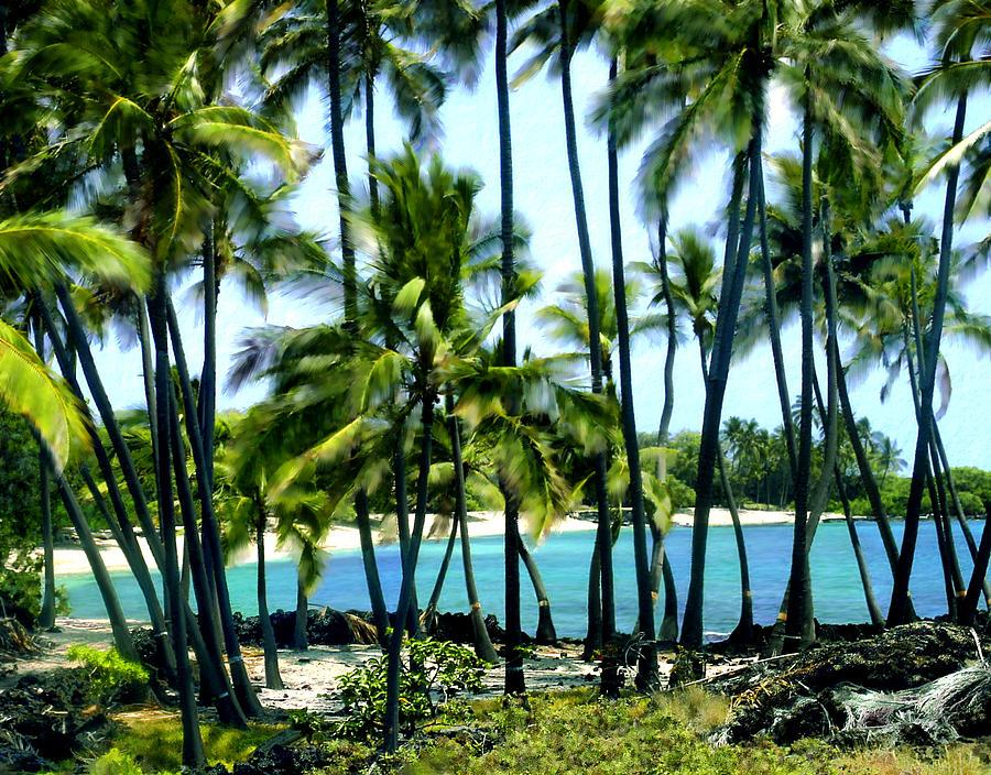 Hawaii Photograph - Afternoon At Kakaha Kai by Kurt Van Wagner