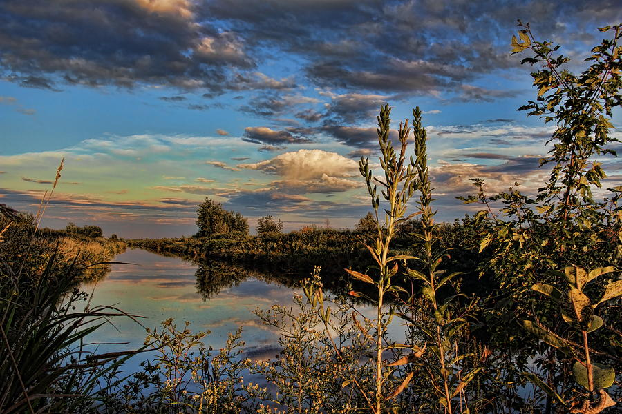 Late Afternoon in the Mead Wildlife Area by Dale Kauzlaric