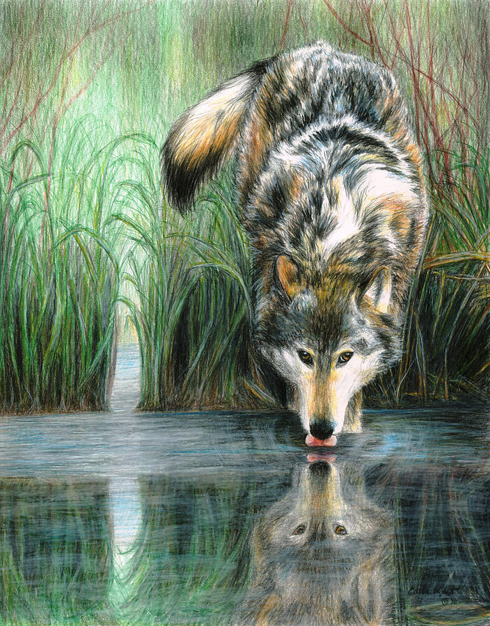 Afternoon Reflection Painting By Carla Kurt