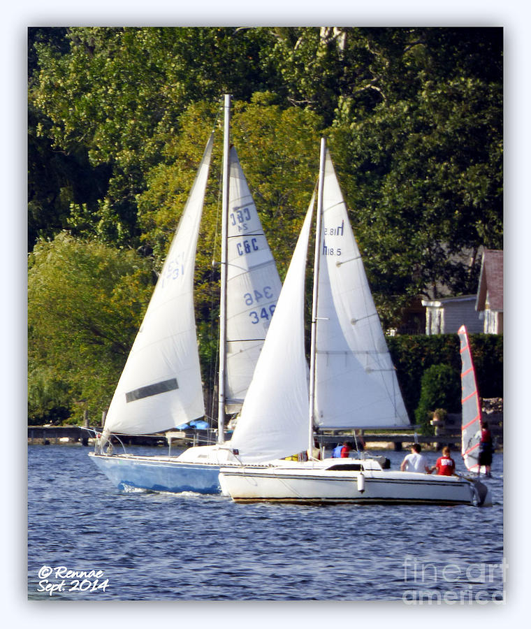 Sail Boats Photograph - Afternoon Sailing by Rennae Christman