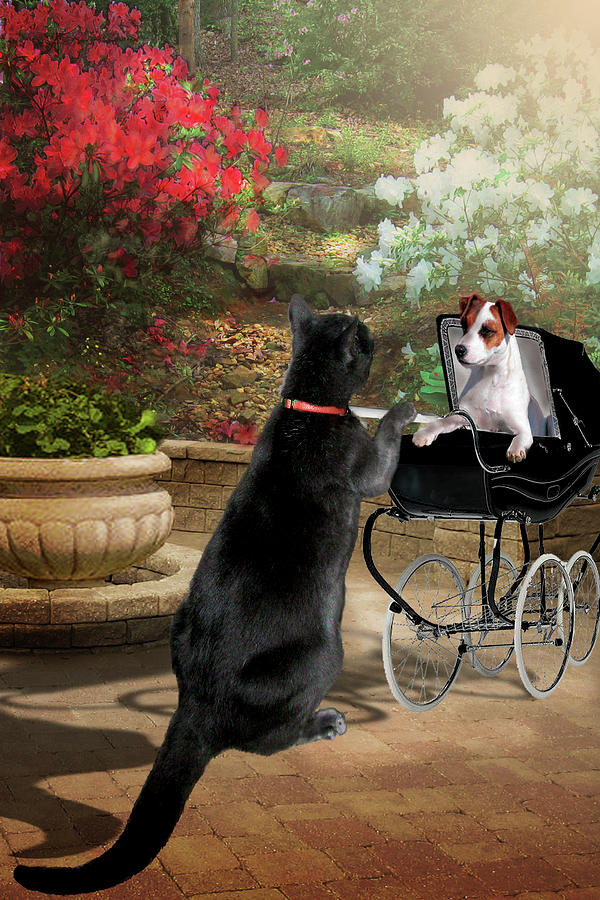 Humorous Pet Picture Painting - Afternoon Stroll by Regina Femrite