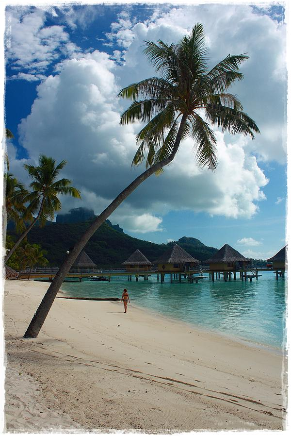 French Polynesia Photograph - Afternoon Stroll by Nick Difi