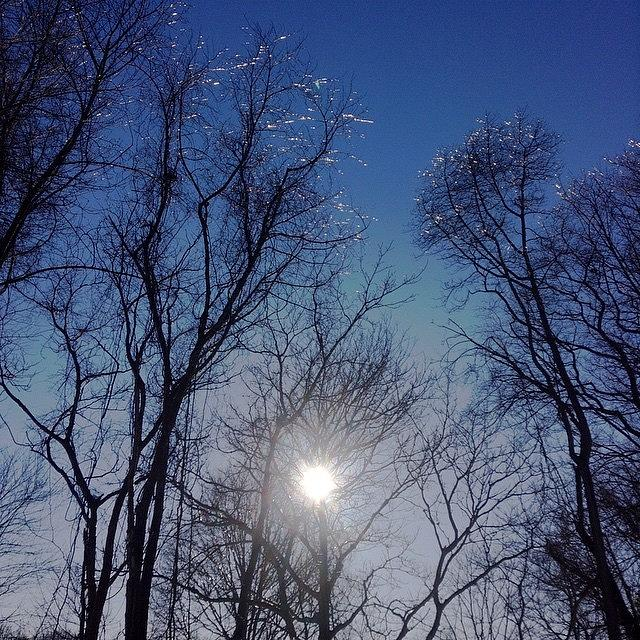 Chilly Photograph - Afternoon Sun by Keila Carvalho