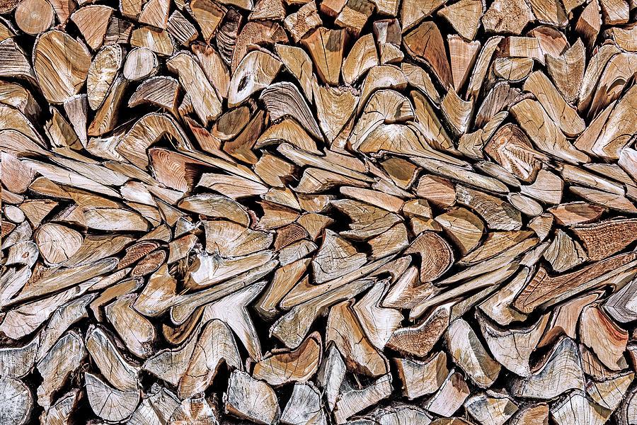 Wood Photograph - Against The Grain by Wayne Pearson