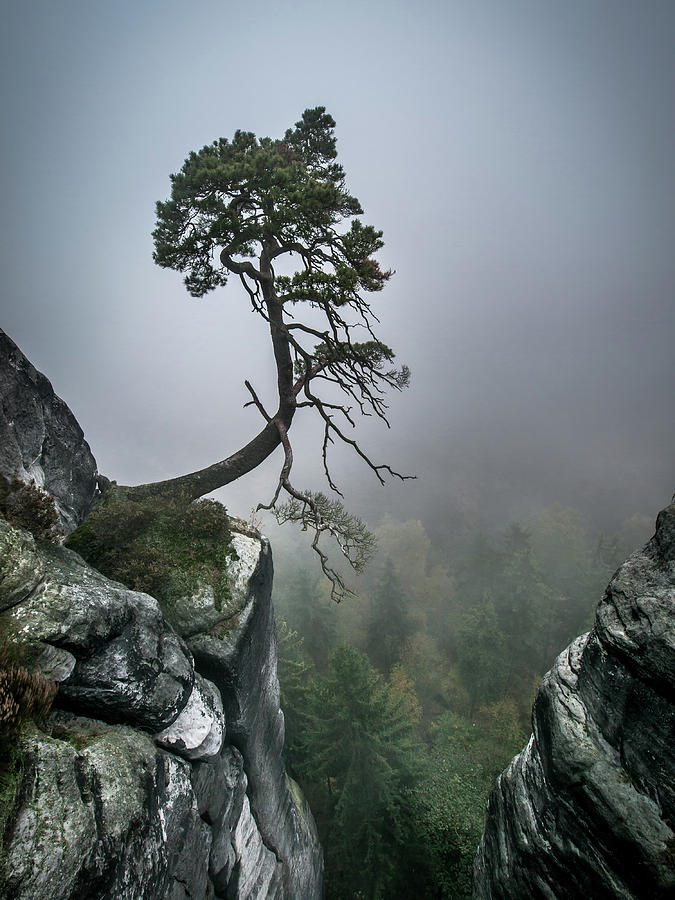 Landscape Photograph - Against The Odds by Andreas Wonisch