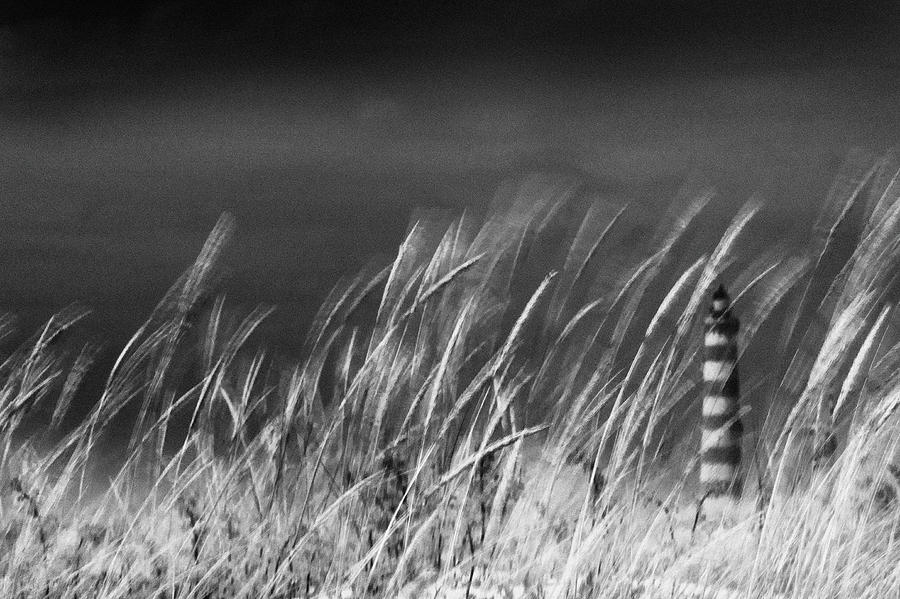 Wind Photograph - Against The Wind by Rui Correia