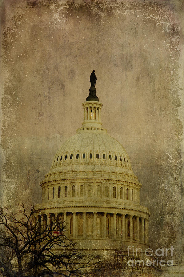Liberty Photograph - Aged Capitol Dome by Terry Rowe