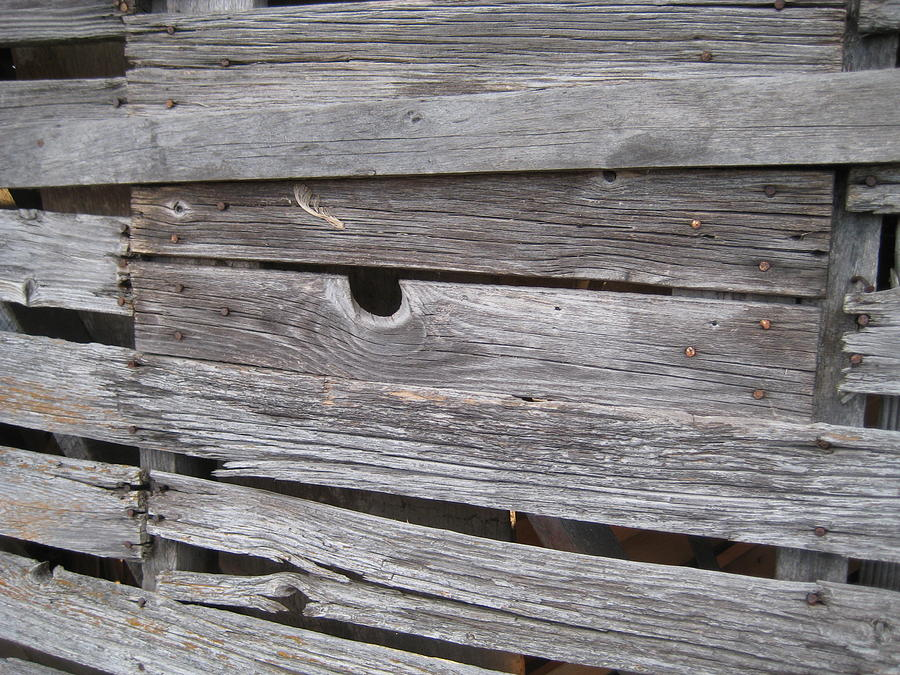 Aged Wood Photograph - Aged Wood by Crow River North Photography