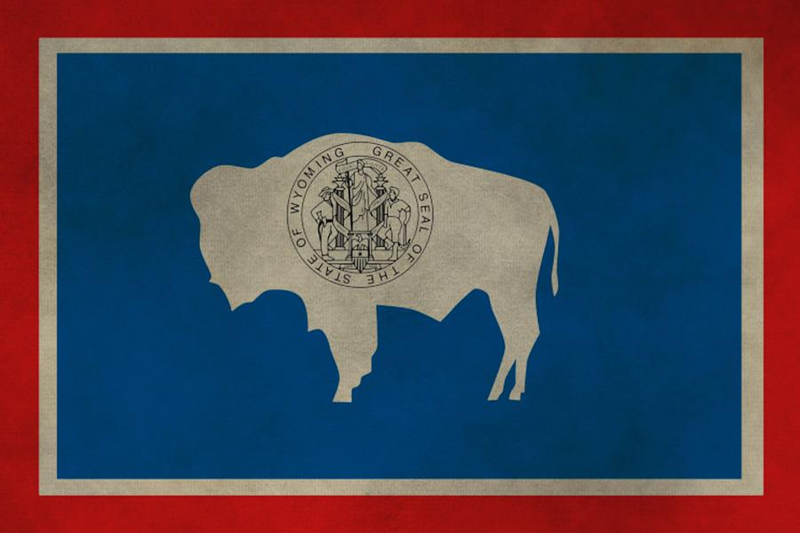 Wyoming State Flag Photograph - Aged Wyoming State Flag by Dan Sproul