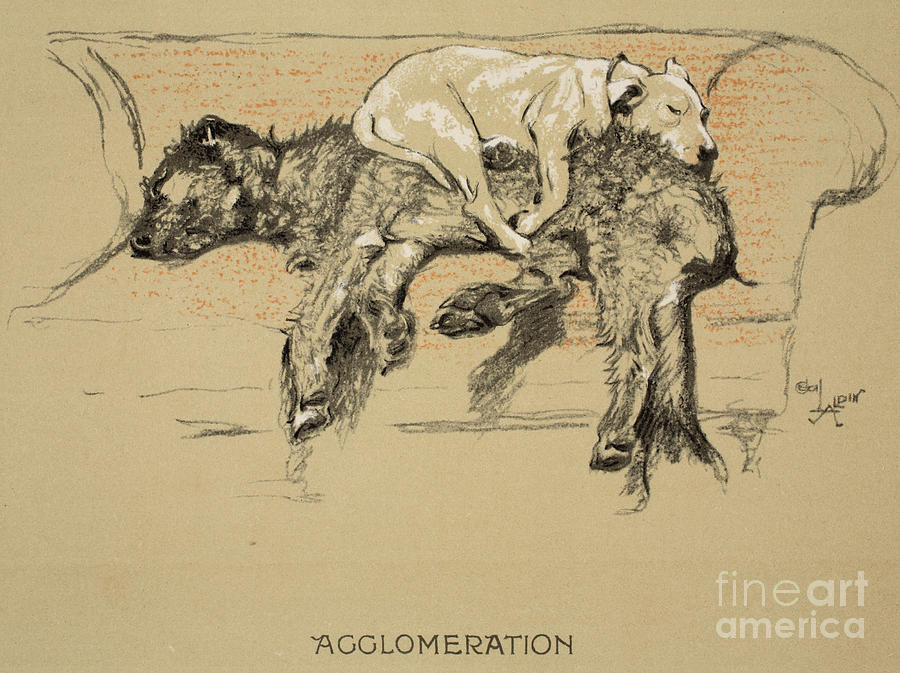 Dogs Painting - Agglomeration by Cecil Charles Windsor Aldin
