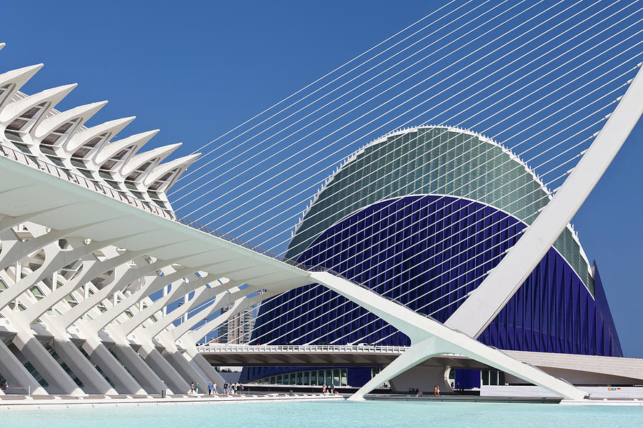 Agorra And Suspension Bridge, Valencia Photograph by David Clapp