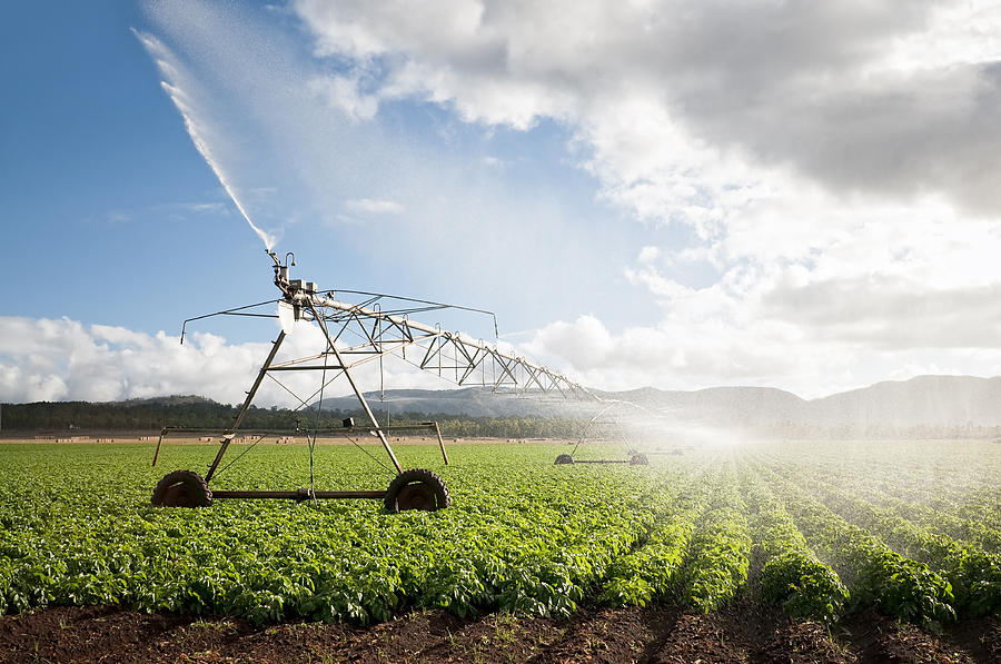 Agriculture: Crop Irrigation Photograph by Georgeclerk