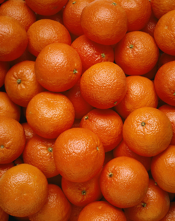 View Photograph - Agriculture - Field Of Tangerines by Joel Glenn
