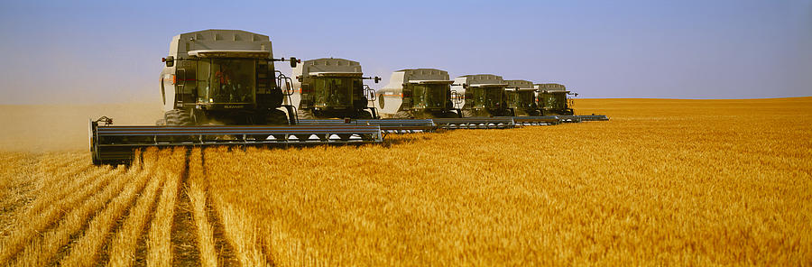 Country Photograph - Agriculture - Six Gleaner Combines by Timothy Hearsum