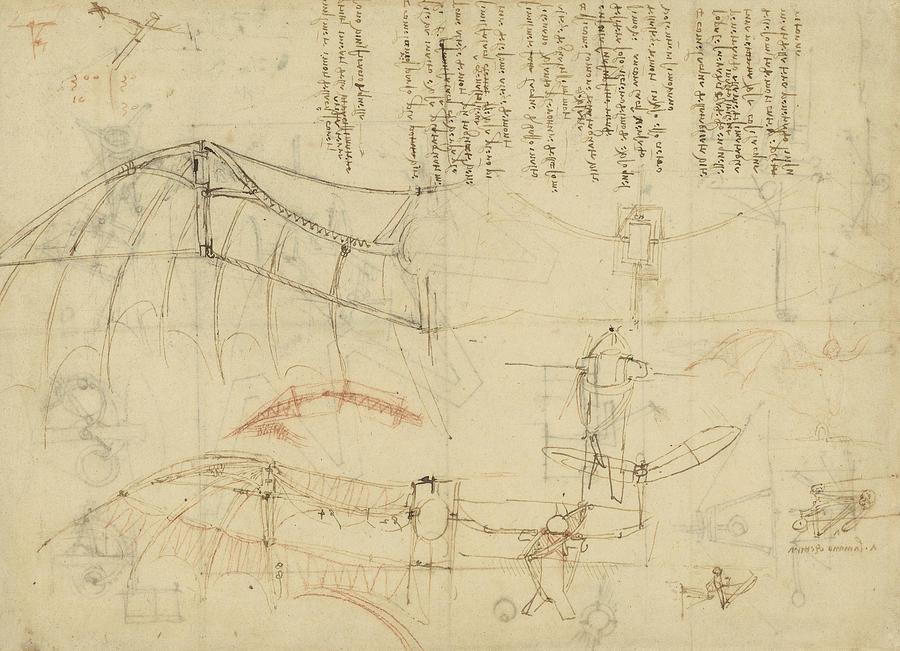 Leonardo Drawing - Aircraft The Machine Has Been Reduced To The Simplest Shape by Leonardo Da Vinci
