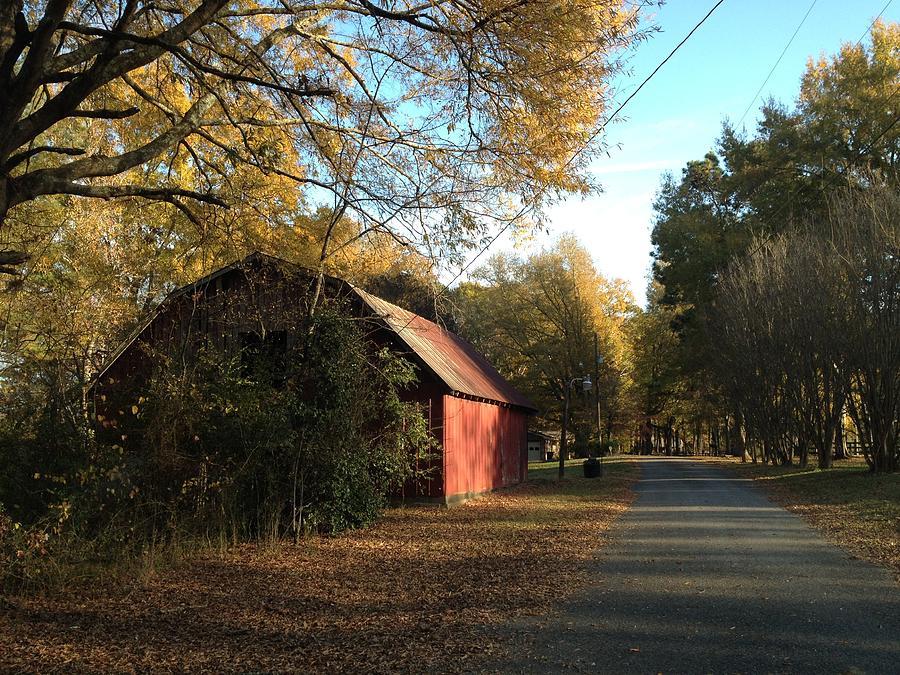 Pleasant Lane Photograph - Alabama Red by Don F  Bradford