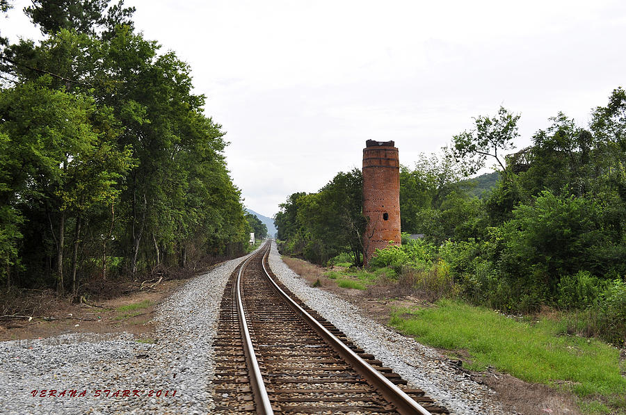 Alabama Photograph - Alabama Tracks by Verana Stark