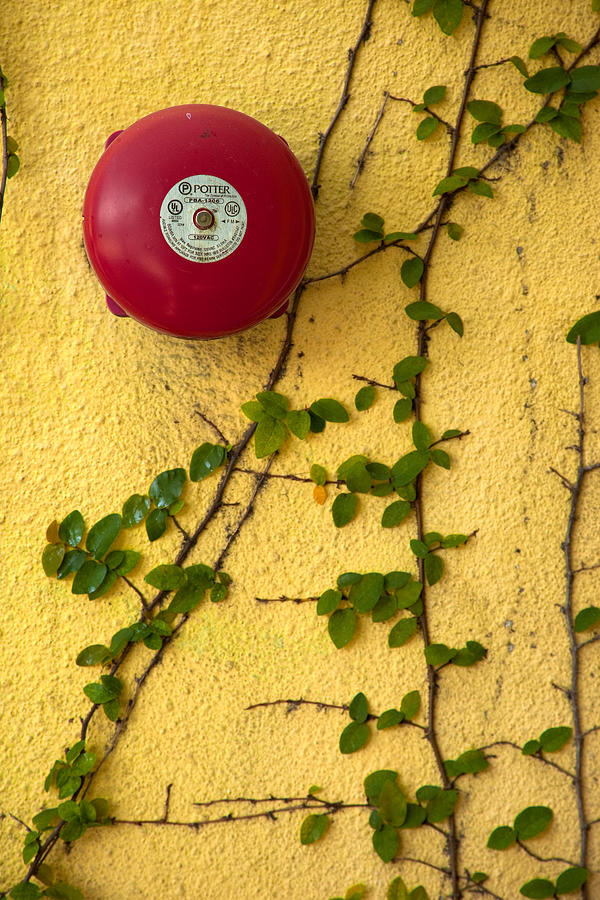 Waiting Room Photograph - Alarm Bell And Vines Yellow Wall by David Smith