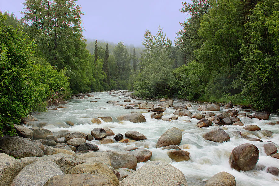 River Photograph - Alaska - Little Susitna River by Kim Hojnacki