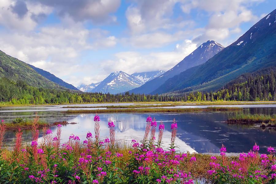 Alaskan Horizons by Patrick Wolf