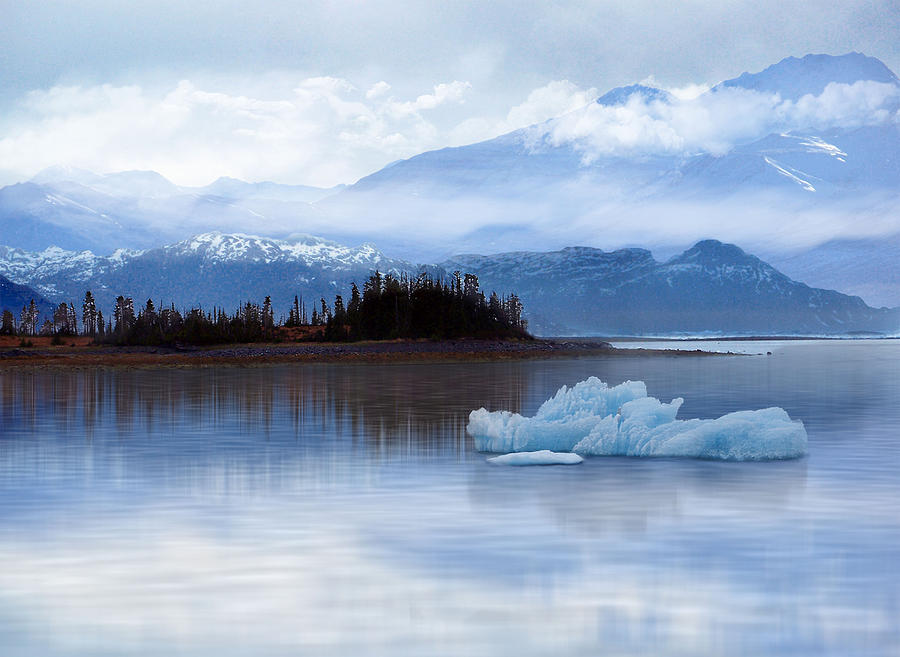 Alaska Digital Art - Alaskan Mountain Side by Nina Bradica