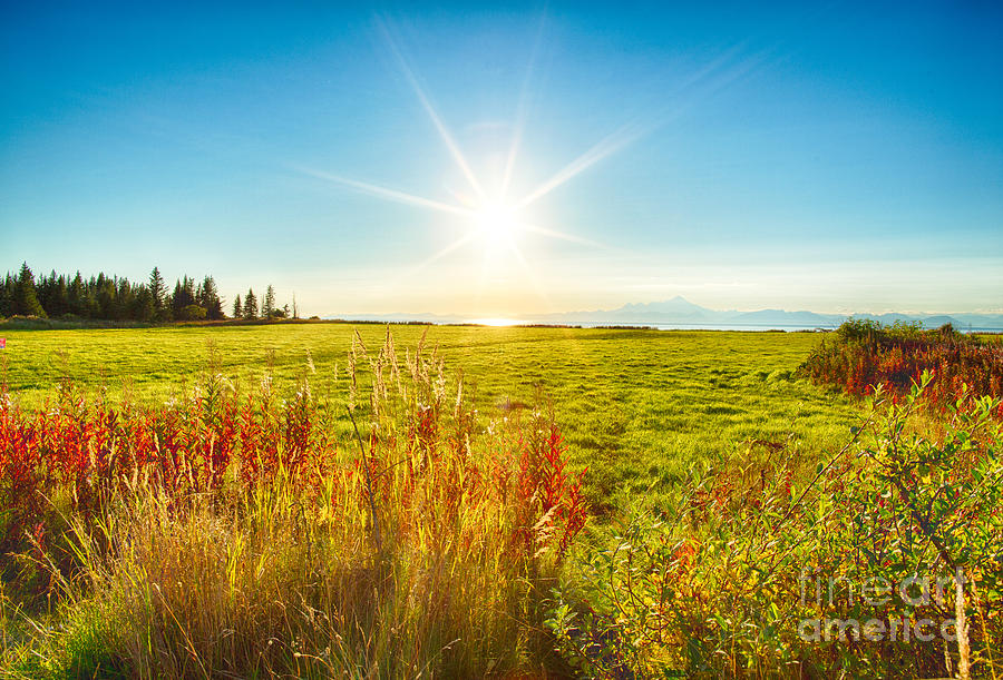 Sun Photograph - Alaskan Sunburst by Paul Karanik