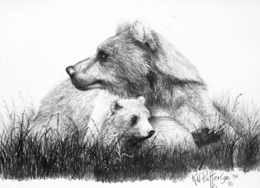Alert Mom Grizzly Bear Drawing by Bob Patterson