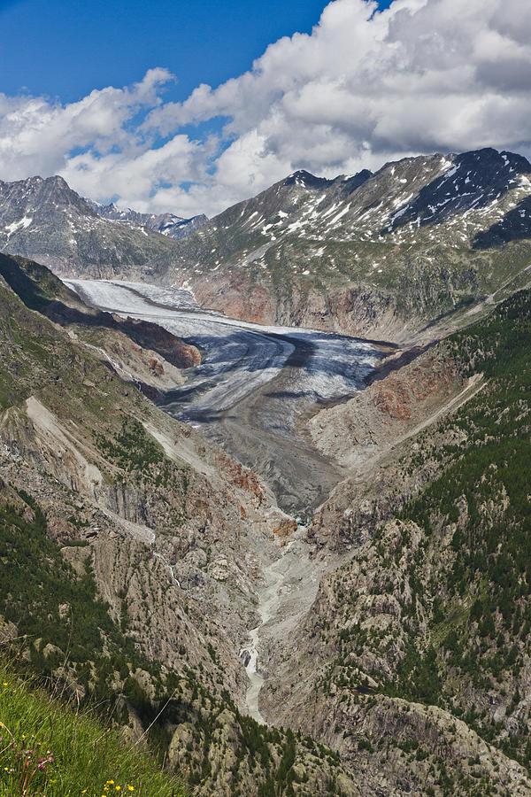 Glacier Photograph - Aletsch Glacier by Cath Ager