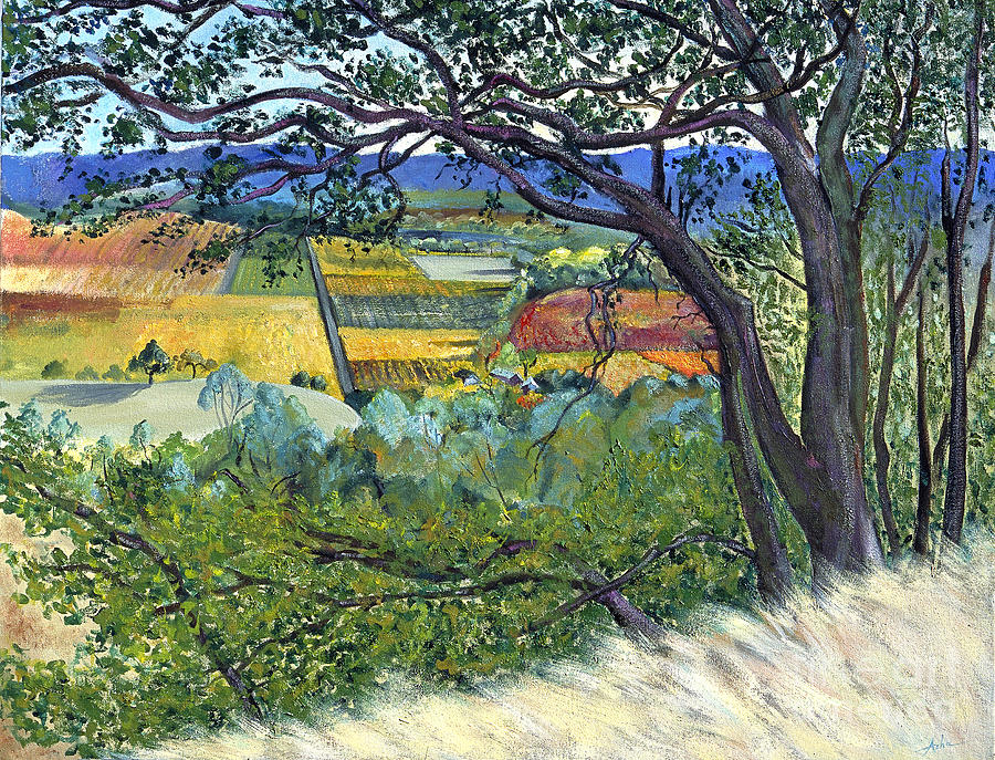 Rural Landscape Painting - Alexander Valley Vinyards by Asha Carolyn Young