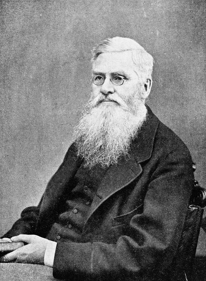 1878 Photograph - Alfred Russel Wallace (1823-1913) by Granger