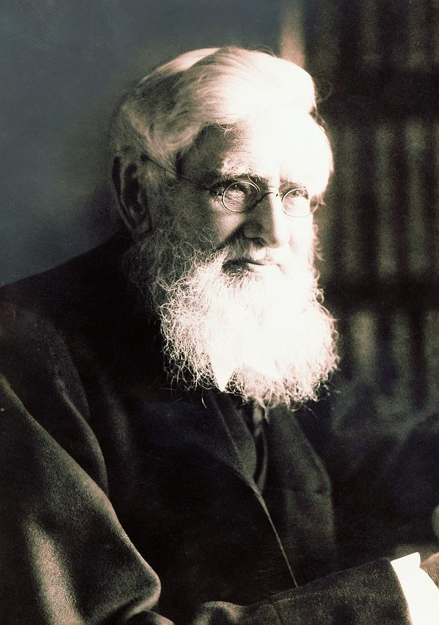 Alfred Wallace Photograph - Alfred Russel Wallace by American Philosophical Society