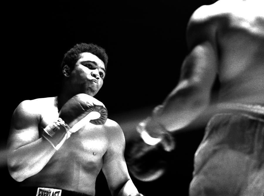 Ali - The Look Photograph by Robert  Rodvik