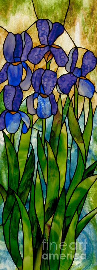 Stained Glass Glass Art - Alices Irises by David Kennedy