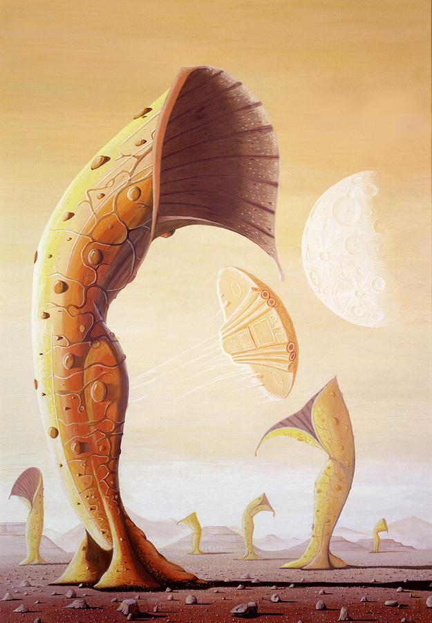 Plants Photograph - Alien Plants Being Cultivated by Mark Garlick
